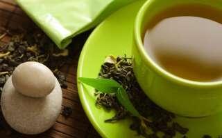 Ройбуш что это, полезные свойства чая, исследования пользы и вреда