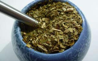 Чай мате полезные свойства, возможный вред для здоровья