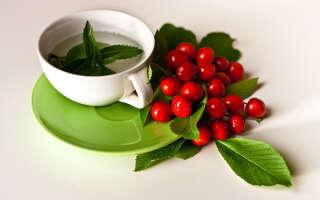 Чай из листьев вишни польза и вред, свойства для здоровья