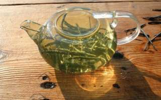 Чай Кудин полезные свойства, исследование пользы и вреда, как заваривать