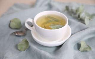 Чай с эвкалиптом польза и вред, изучаем лечебные свойства