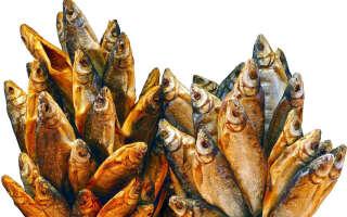 Вяленая, сушеная рыба польза и вред, исследования свойств