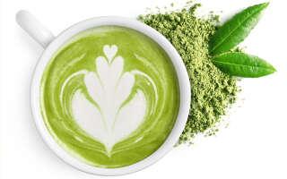 Чай матча (маття) полезные свойства, возможный вред для здоровья