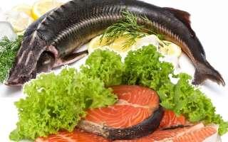 Чем полезна красная рыба, возможный вред, 17 свойств для организма