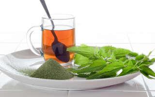 Чай из крапивы польза и вред, исследования лечебных свойств