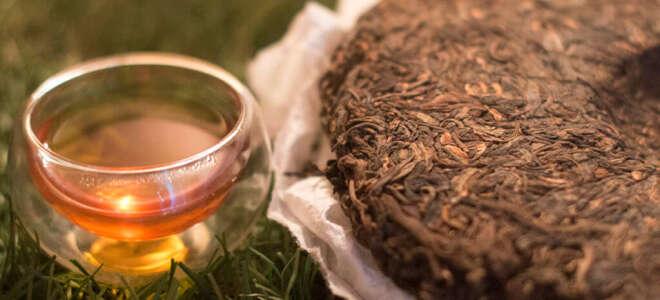 Чай пуэр польза и вред, исследования полезных свойств