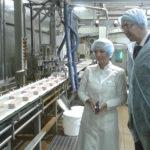 Как выглядит промышленное производство кунжутной халвы