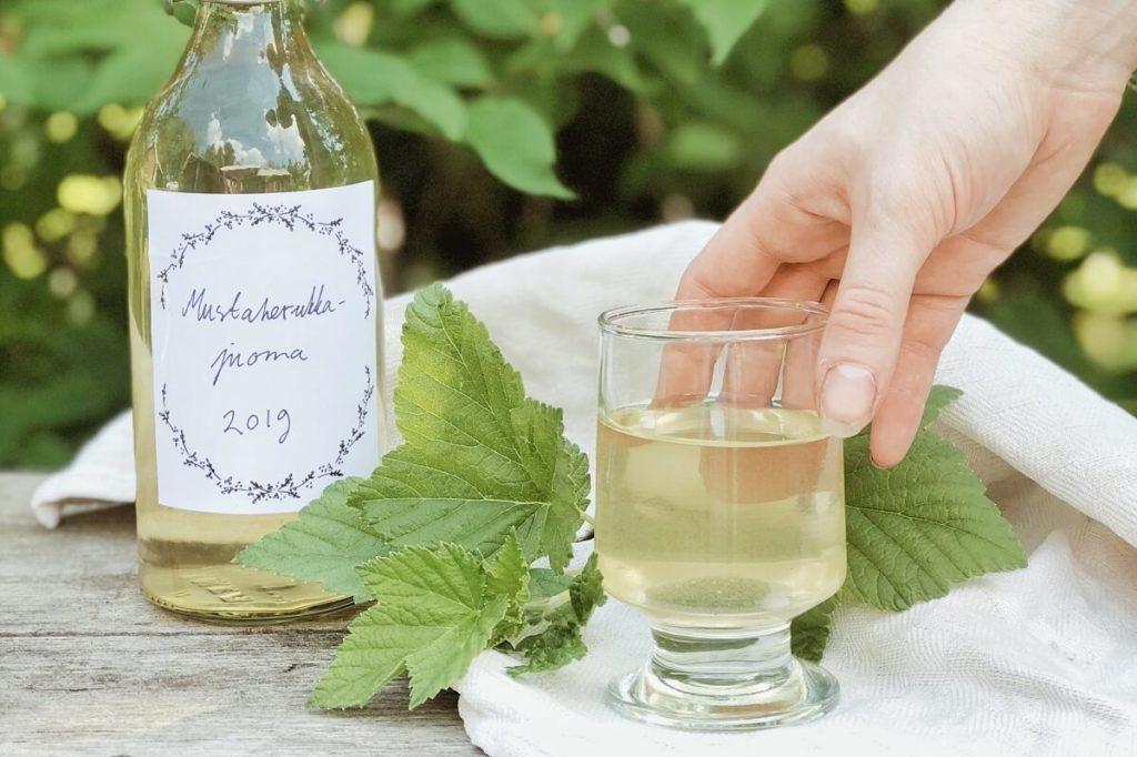 косметика, листья черной смородины, чай из листьев смородины