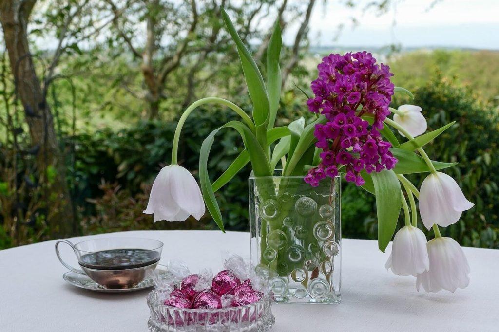 Чай и цветы бадана