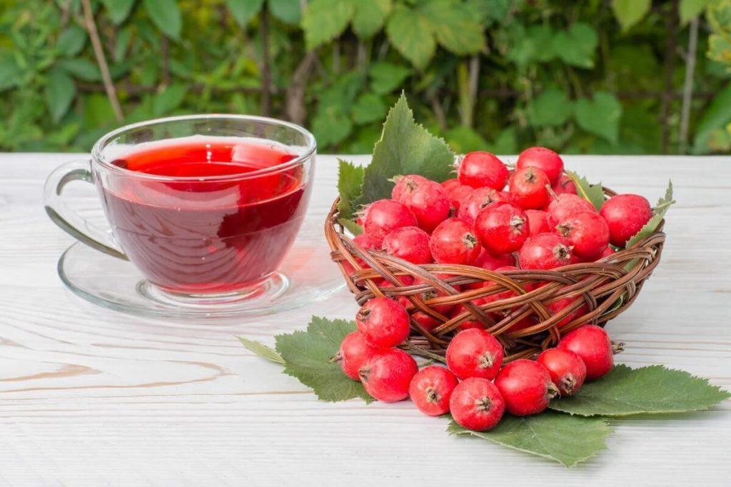 Чай из ягод боярышника