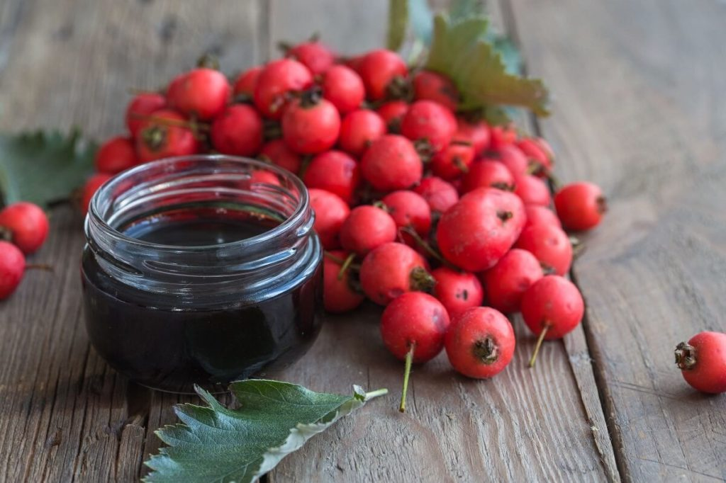 Баночка и плоды боярышника