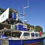 Промышленный вылов рыбы в Новой Зеландии