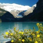 Пятилистник кустарниковый у горного озера
