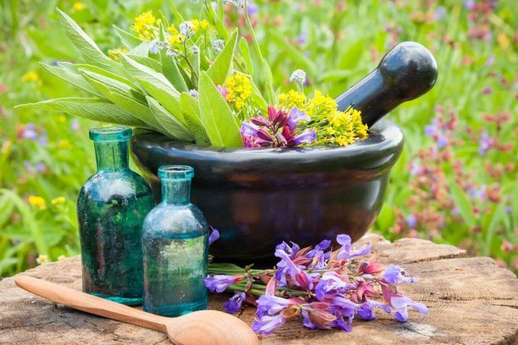 Травы для домашней косметики