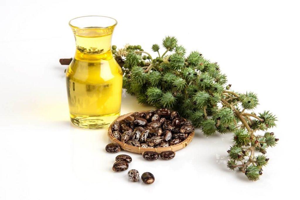 Касторовое масло из клещевины
