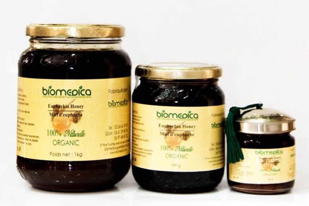 Молочаевый мед