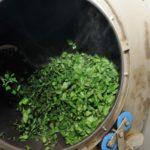 Барабан для скручивания листьев чая