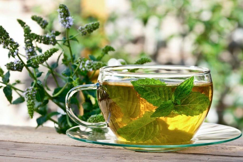 Чай из мяты и мелиссы