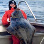 Огромный палтус, выловленный в Норвегии