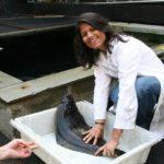 Разведение палтуса в искусственных водоемах