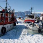 Гренландские суда для промышленного лова палтуса