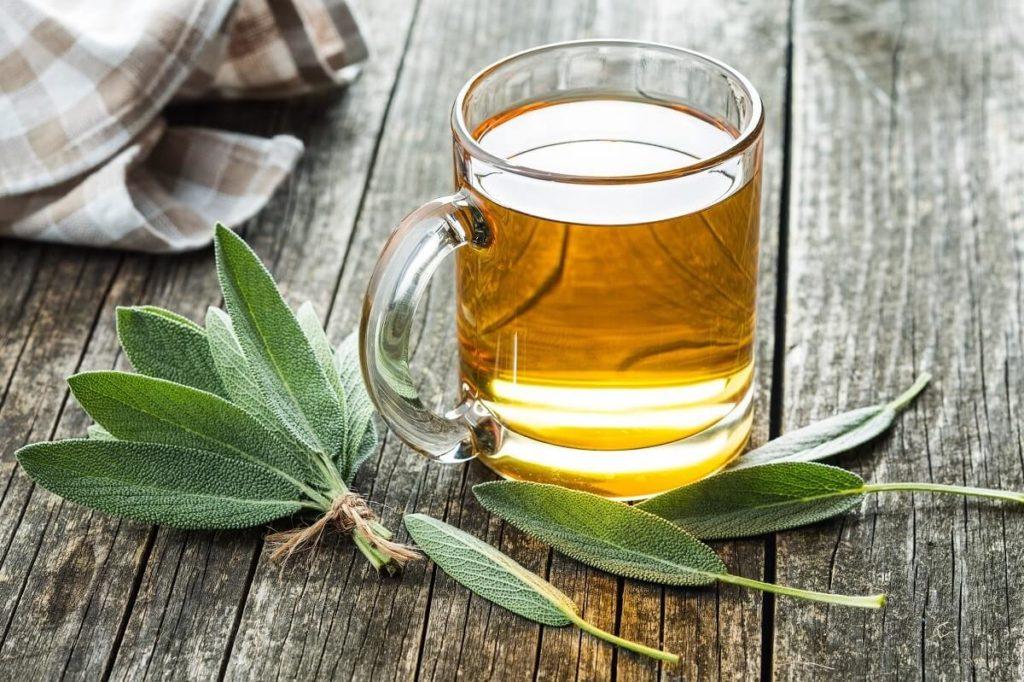 Чай из листьев шалфея
