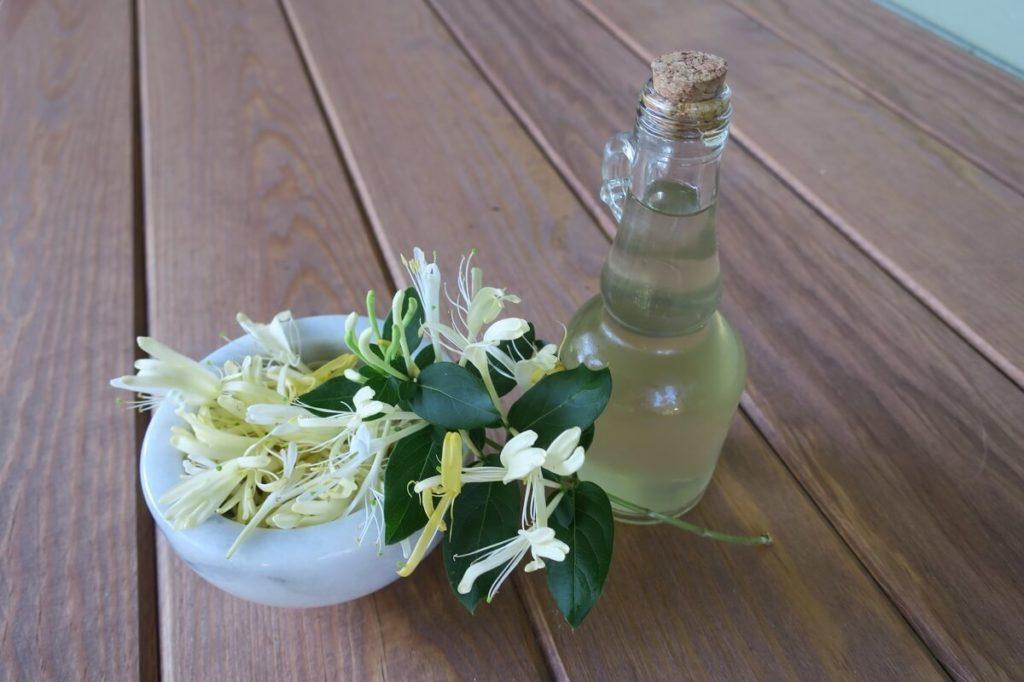 Цветы и эфирное масло из жимолости