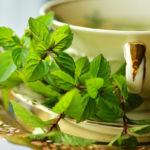 Мятный чай в чашке