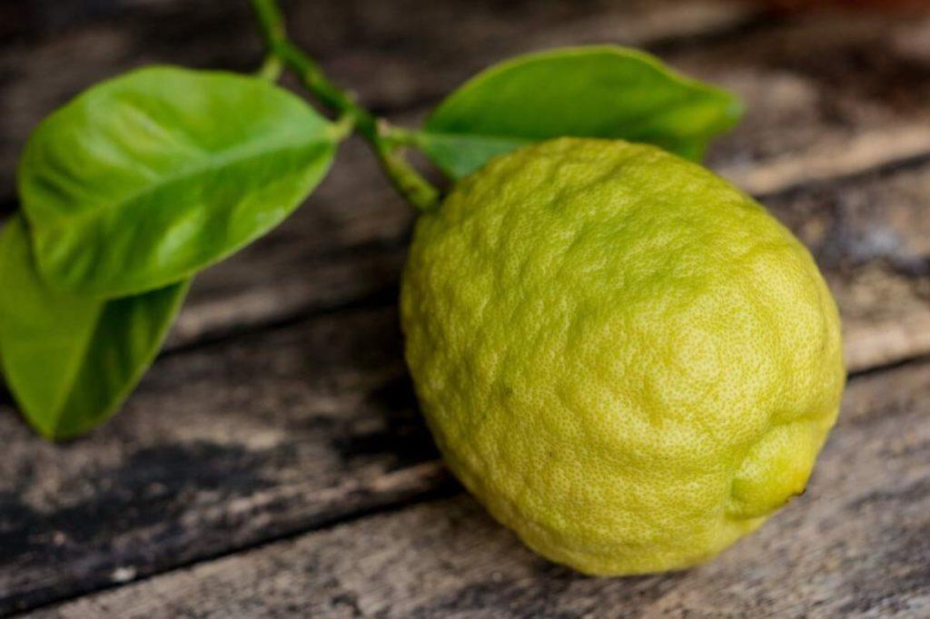 Плод бергамота
