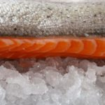 Свежая сёмга (атлантический лосось)