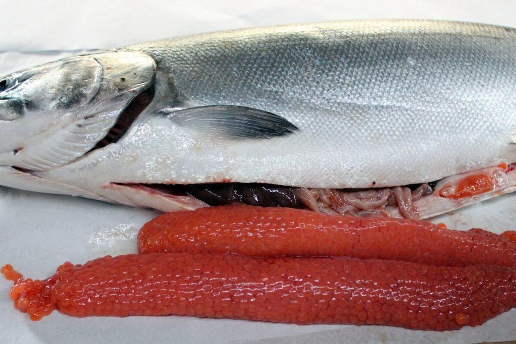 Икра и потрошенный лосось