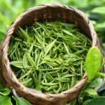 Собранное сырье для белого чая