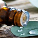 масло из листьев эвкалипта