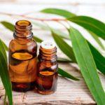 ароматическое масло эвкалипта