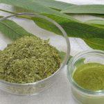 порошок из листьев эвкалипта