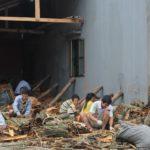 Переработка корицы во Вьетнаме