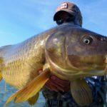 рыбак с огромным карпом в руках