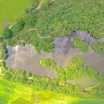 искусственный водоем для выращивания карпов