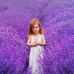 рыжая девочка среди лаванды