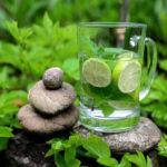 напиток из свежих листьев мяты с лаймом