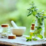 мята в ароматерапии