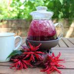 как заварить чай освего из монарды (бергамота)