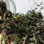 сухия листья и цветы монарды (бергамота) в банке