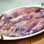 свежие кальмары на блюде
