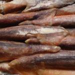 замороженное филе кальмара