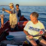 рыбаки поймали кальмара