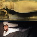 изучение гигантских кальмаров