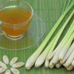 чай из лемонграсса (лимонной травы)