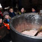 производство рыбьего жира из печени трески