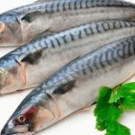 свежая рыба скумбрия с лимоном и петрушкой